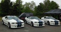 Trio of GT350s